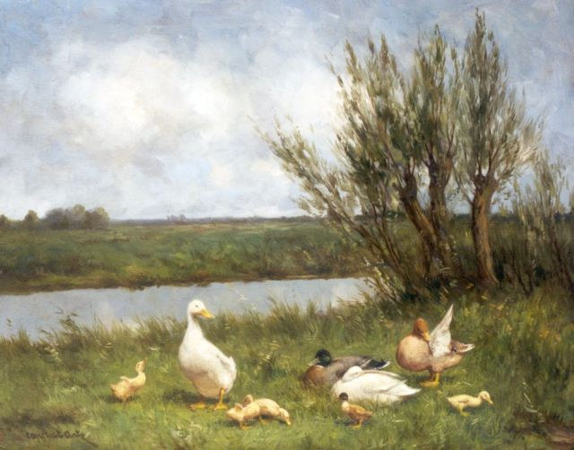 Artz C.D.L.  | Ducks on the riverbank, Öl auf Leinwand 40,0 x 50,2 cm, signed l.l.