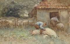 Nat W.H. van der - Schafe scheren, Aquarell auf Papier 34,4 x 52,6 cm, signiert l.u.